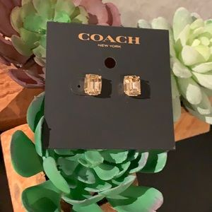Coach Rose Gold Earrings